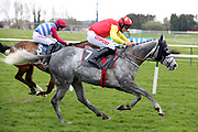 FROM EDEN (7) ridden by Davy Russell and trained by Gordon Elliott (Ire) winning The Fosters Your Local Family Funeral Directors Handicap Hurdle Race over 3m (£16,800) during the Scottish Grand National, Ladies day at Ayr Racecourse, Ayr, Scotland on 12 April 2019.