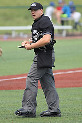 07 June 2015:  Umpire David Fields during a Frontier League Baseball game between the Southern Illinois Miners and the Normal CornBelters at Corn Crib Stadium on the campus of Heartland Community College in Normal Illinois