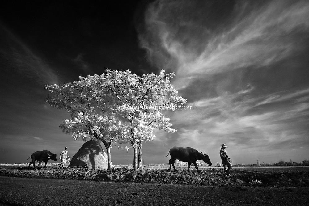 Vietnam Images-landscape-Nature-People-Mekong delta hoàng thế nhiệm hoàng thế nhiệm