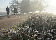 © Licensed to London News Pictures. 06/11/2014. Richmond, UK. Dog walkers walk past frozen spider webs.  People and animals during a frosty start to the day on 6th November 2014. Temperature fell across the country overnight. Photo credit : Stephen Simpson/LNP