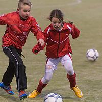 20160219 - De Twentsche Voetbalschool