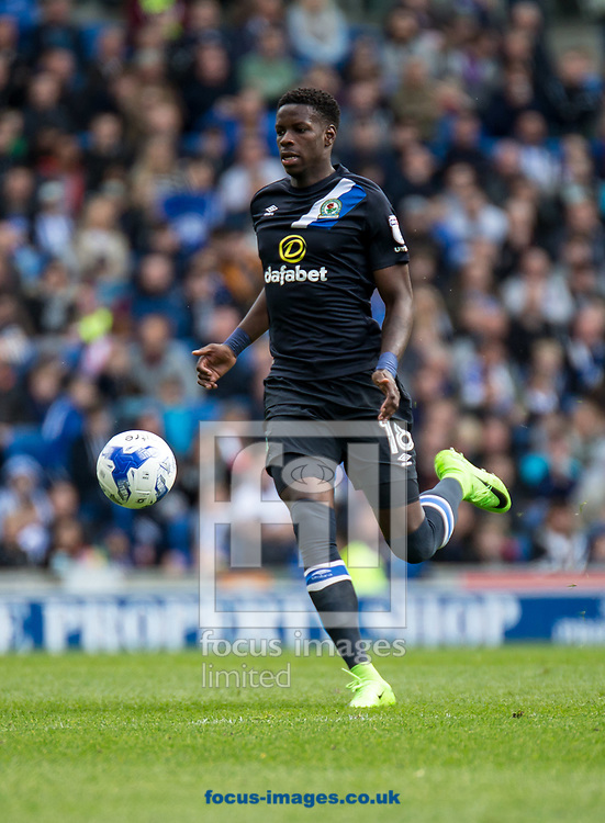 Lucas Joao of Blackburn Rovers during the Sky Bet Championship match at the American Express Community Stadium, Brighton and Hove<br /> Picture by Liam McAvoy/Focus Images Ltd 07413 543156<br /> 01/04/2017