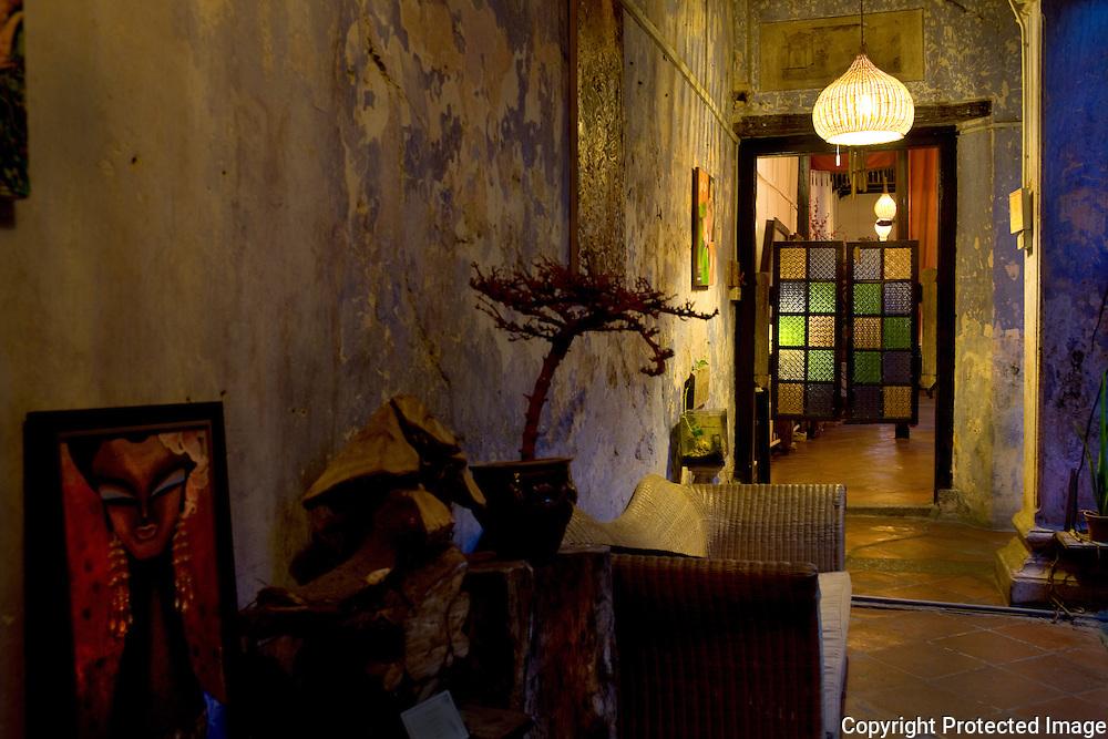 Baboon House