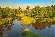 Wetland<br />Parry Sound<br />Ontario<br />Canada