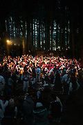 People dance in a grand circle until dawn. Revelling in the magic of the forest.