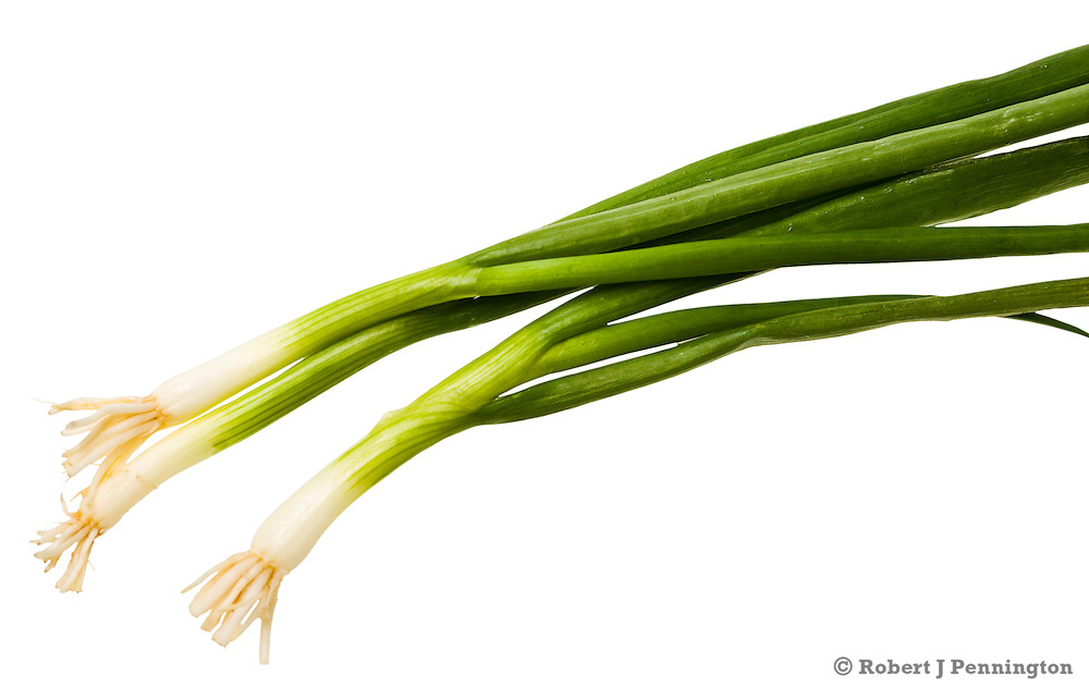 Green scallions on a white background
