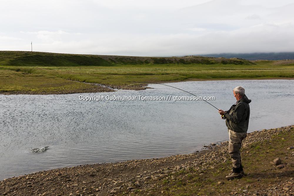 Tómas Guðmundsson catching an atlantic salmon at the pool Malarsveigur on the river Breiðdalsá, Iceland.