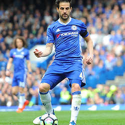 Cesc Fabregas of Chelsea on the ball during Chelsea vs Crystal Palace, Premier League , 01.04.17 (c) Harriet Lander | SportPix.org.uk