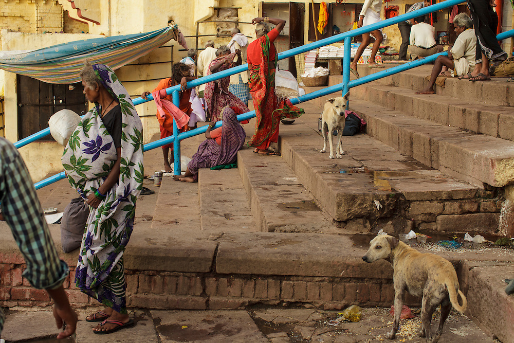 Poor women and dogs at Chausatti Ghat by the Ganges river in Varanasi, India.