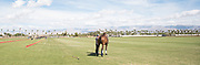Empire Polo Club, Indio, California, March 2018