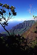 Kalalau Lookout, Kokee State Park, Waimea Canyon, Kauai, Hawaii, USA<br />