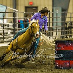 Copper Spring Ranch Futurity & Derby