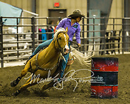 Copper Spring Ranch Futurity & Derby