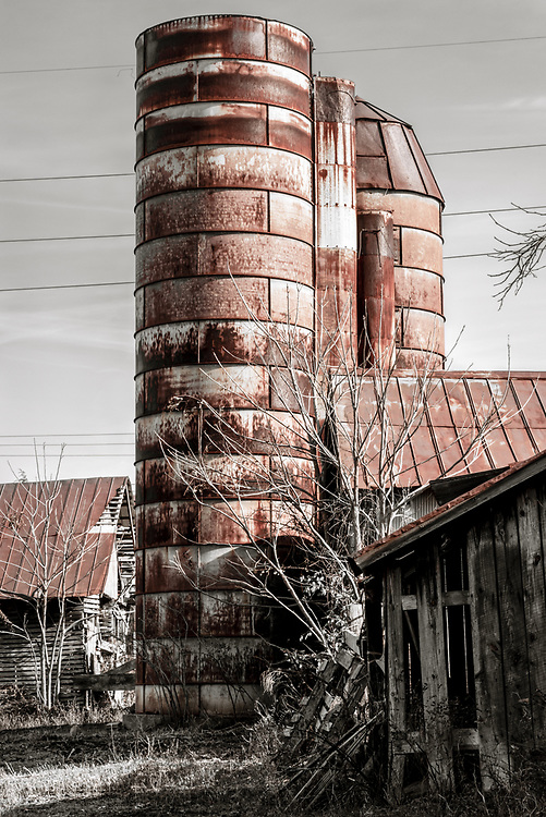 These old grain silos at Jordan Farm stand as monuments to this once large farm in Guildford County, NC.  To emphasize age and give a bit of styling, I removed all color except for the rust.  I then processed the image to emulate Kodachrome film.