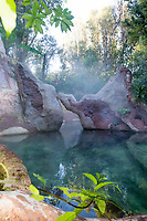 the lost spring whitianga thermal pools photography by felicity jean photography fleaphotos morning shots of the pools 2018 coromandel photographer