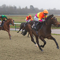 Excellent Royale and Robert Winston winning the 1.30 race
