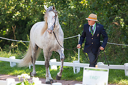 Juan Robles Marchena, (ESP), Cepellon, Fermentado, Fresado, Tensor, Velero XI - Horse Inspection Driving - Alltech FEI World Equestrian Games™ 2014 - Normandy, France.<br /> © Hippo Foto Team - Leanjo de Koster<br /> 25/06/14