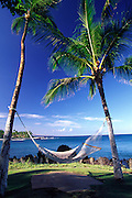 Hammock, Waikoloa Resort, Island of Hawaii<br />