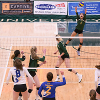 4th year outside hitter Ashlee Sandiford (1) of the Regina Cougars in action during Women's Volleyball home game on February 3 at Centre for Kinesiology, Health and Sport. Credit: Arthur Ward/Arthur Images
