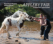 Appleby Fair book cover