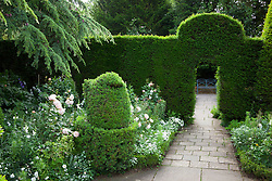 The White Garden at Hidcote Manor with yew hedges and box topiary