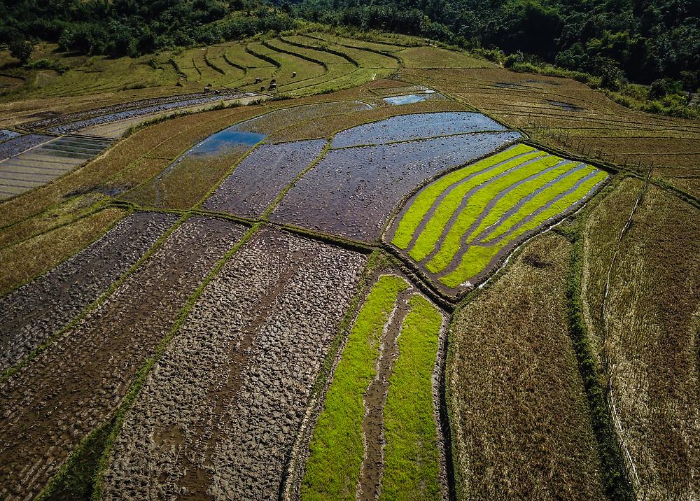 KYAING TONG, MYANMAR - CIRCA DECEMBER 2017:  Rice paddies around the town of Kyaing Tong in Myanmar