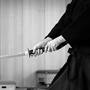Traditional Martial Arts of Japan