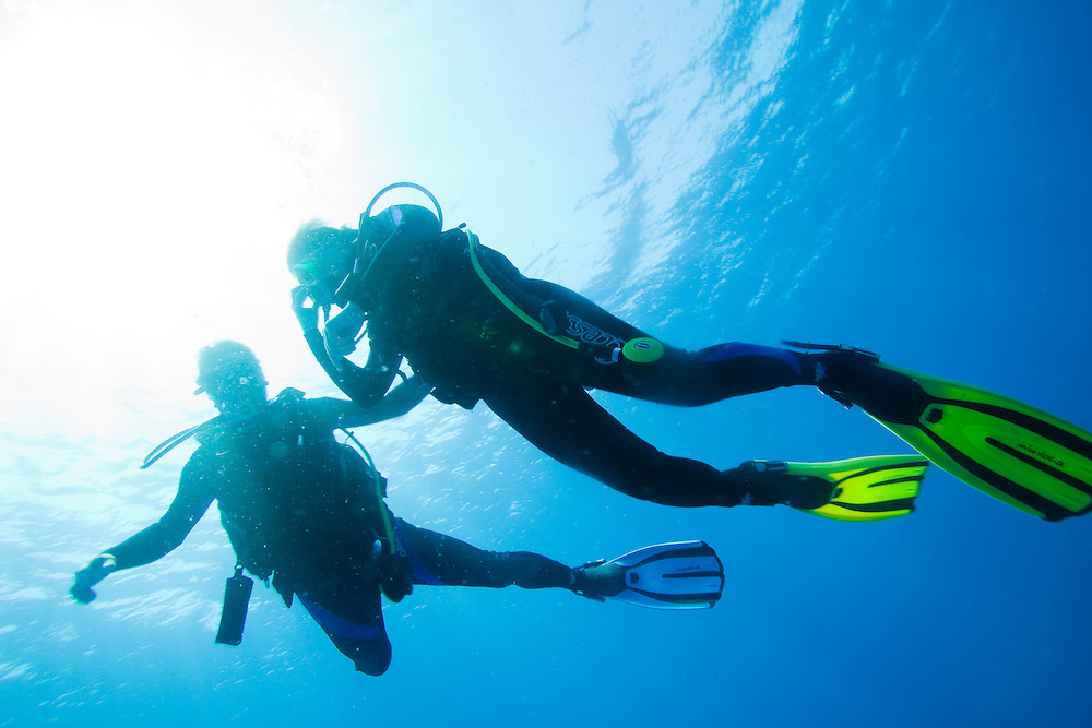 Africa, Tanzania, Zanzibar, Matemwe Bay, Silhouette of scuba divers ascending toward surface of Indian Ocean