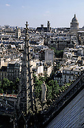 France. Paris elevated view from Notre dame cathedral. pantheon hill and church and the Seine river view from the spire of Notre dame cathedral