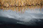 The dark skies of autumn reflected in the ponds of Lee Metcalf National Wildllife Refuge. Missoula Photographer, Missoula Photographers, Montana Pictures, Montana Photos, Photos of Montana