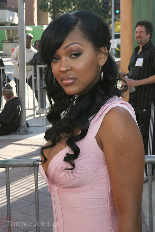 Meagan Goode arriving at The 39th Annual NAACP IMAGE AWARDS held at the Shrine Auditorium in Los Angeles, Calaifornia on February 14, 2008