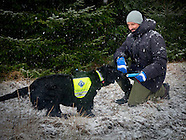 Vsit Norwegian Rescue Dogs, Ski 11-01-2017
