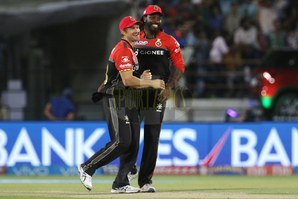 Shane Watson of the Royal Challengers Bangalore and Chris Gayle of the Royal Challengers Bangalore celebrates the wicket of Gujarat Lions captain Suresh Raina during match 20 of the Vivo 2017 Indian Premier League between the Gujarat Lions and the Royal Challengers Bangalore  held at the Saurashtra Cricket Association Stadium in Rajkot, India on the 18th April 2017<br /> <br /> Photo by Vipin Pawar - Sportzpics - IPL