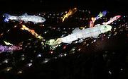 Lantern festival in Seoul November 9, 2014. / Lee Jae-Won