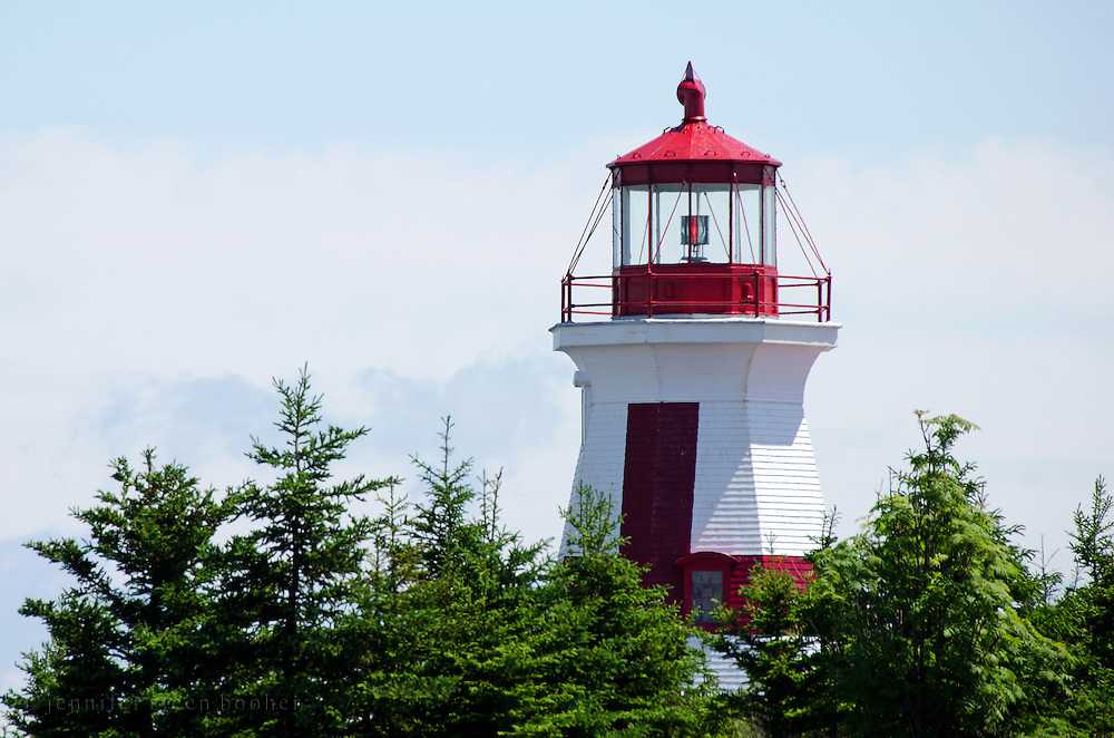 The lantern of the East Quoddy Lighthouse (also called the Head Harbor Light) towers over the tree tops.
