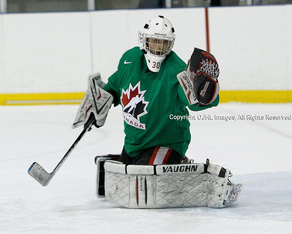 OAKVILLE, ON - Oct 28 : 2013 World Junior A Challenge / Defi Modial Junior A 2013,<br /> (Photo by Tim Bates / OJHL Images)