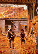 Farm labourers threshing corn with flails on the barn floor. The sheaves of corn had been brought in at Autumn harvest time and stacked in the barn. Kronheim chromolithograph from 'Pictures from Nature' by Mary Howitt (London, 1869).