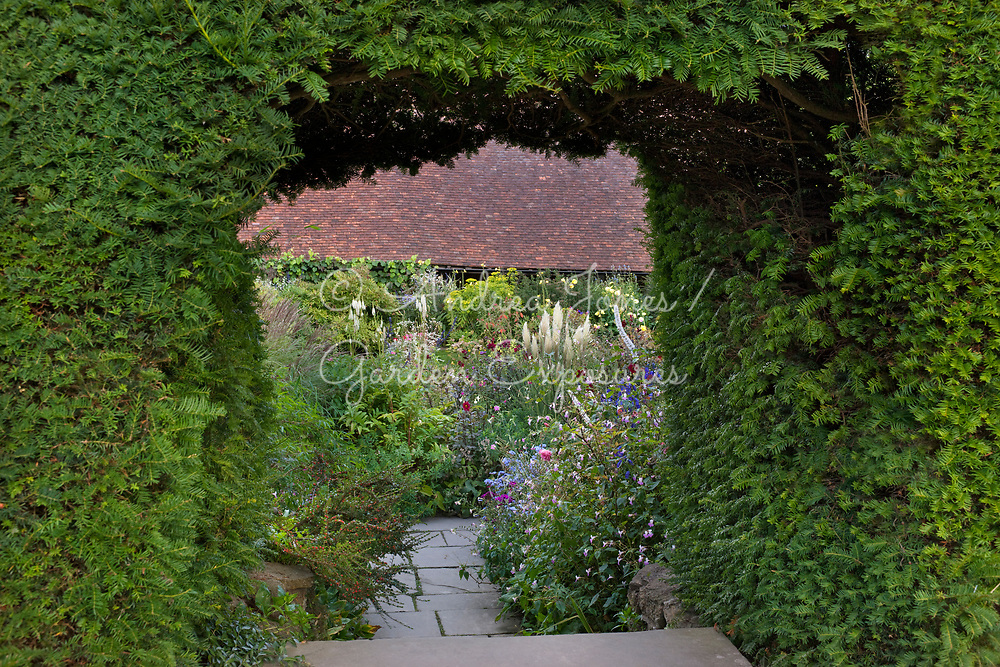 Yew archway and steps leading into the late summer borders of the Sunk Garden at Great Dixter