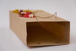 Empty Gift Bag