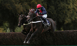 Cultivator ridden by Nico de Boinville on their way to victory in the Herefordshire & Worcestershire Chamber Of Commerce Beginners' Chase at Worcester Racecourse, Worcester.