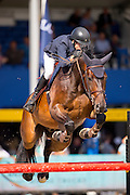 Jens Wuyts - Jackson van de Goorhoeve<br /> FEI World Breeding Jumping Championships for Young Horses 2016<br /> © DigiShots