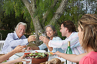 Two couples toasting at garden table
