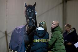 Scholtens Emmelie, NED, Desperado<br /> Jumping Mechelen 2019<br /> © Hippo Foto - Sharon Vandeput<br /> 27/12/19