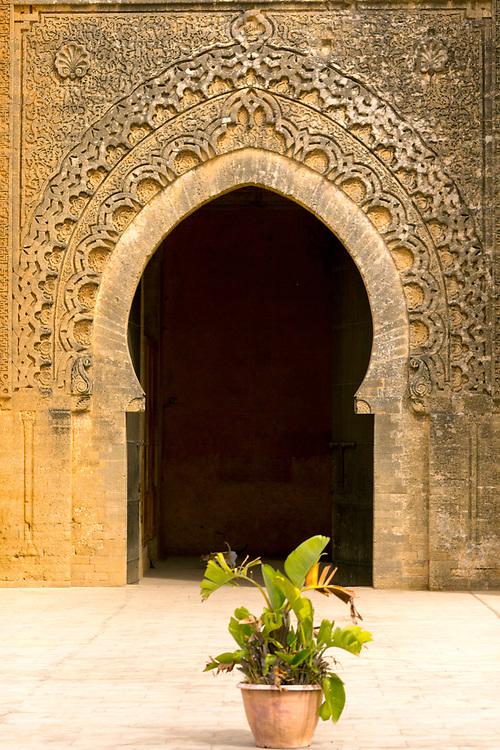 Chellah Gardens, Rabat, Morocco, 2015-10-17.