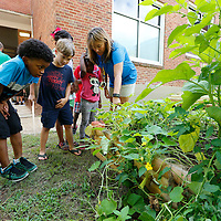Thomas Wells   Buy at PHOTOS.DJOURNAL.COM<br /> Carver Elementary School teacher Carolyn Beasley gives the tour of the school garden that was built using an AEE grant.