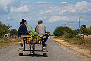 Horse and cart near Manuel Lazo, Pinar del Rio, Cuba.