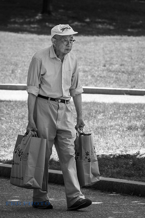 Man On Boston Common Walking Home on a Warm Summer Day