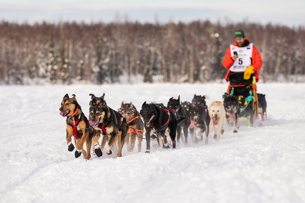 Musher Jessie Holmes after the restart in Willow of the 47th Iditarod Trail Sled Dog Race in Southcentral Alaska.  Afternoon. Winter.