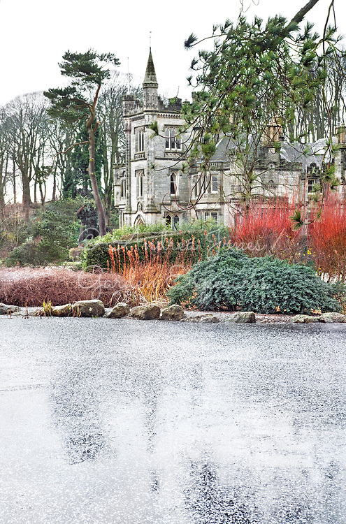 View to Teasses House over frozen pond with red stems of Salix alba var. vitellina 'Britzensis' (Coral bark willow)<br /> <br /> Teasses Estate, Ceres, Fife, Scotland