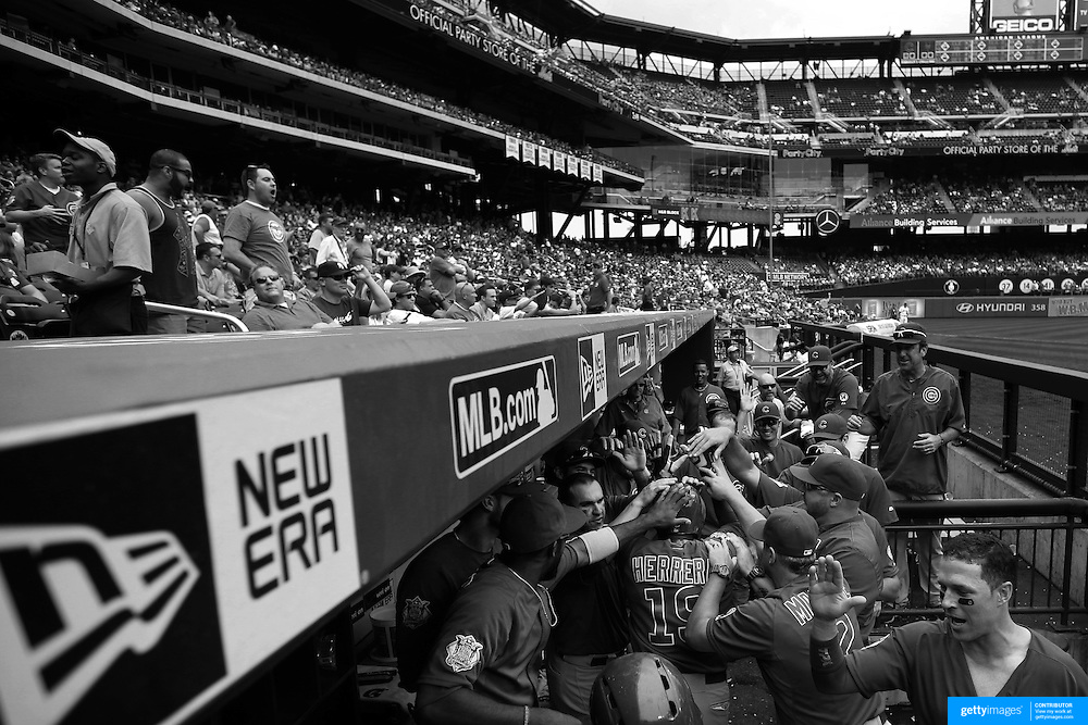 Jonathan Herrera, Chicago Cubs, is congratulated by teammates as he returns to the dug out after hitting a two run home run during the New York Mets Vs Chicago Cubs MLB regular season baseball game at Citi Field, Queens, New York. USA. 2nd July 2015. Photo Tim Clayton